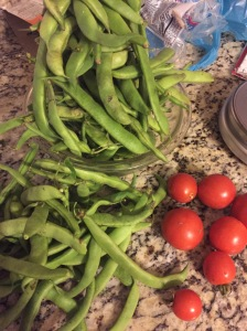 Some of the harvest today.
