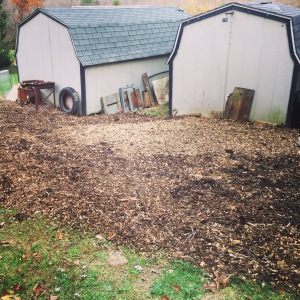 New garden area for 2016! (And bee yard!)